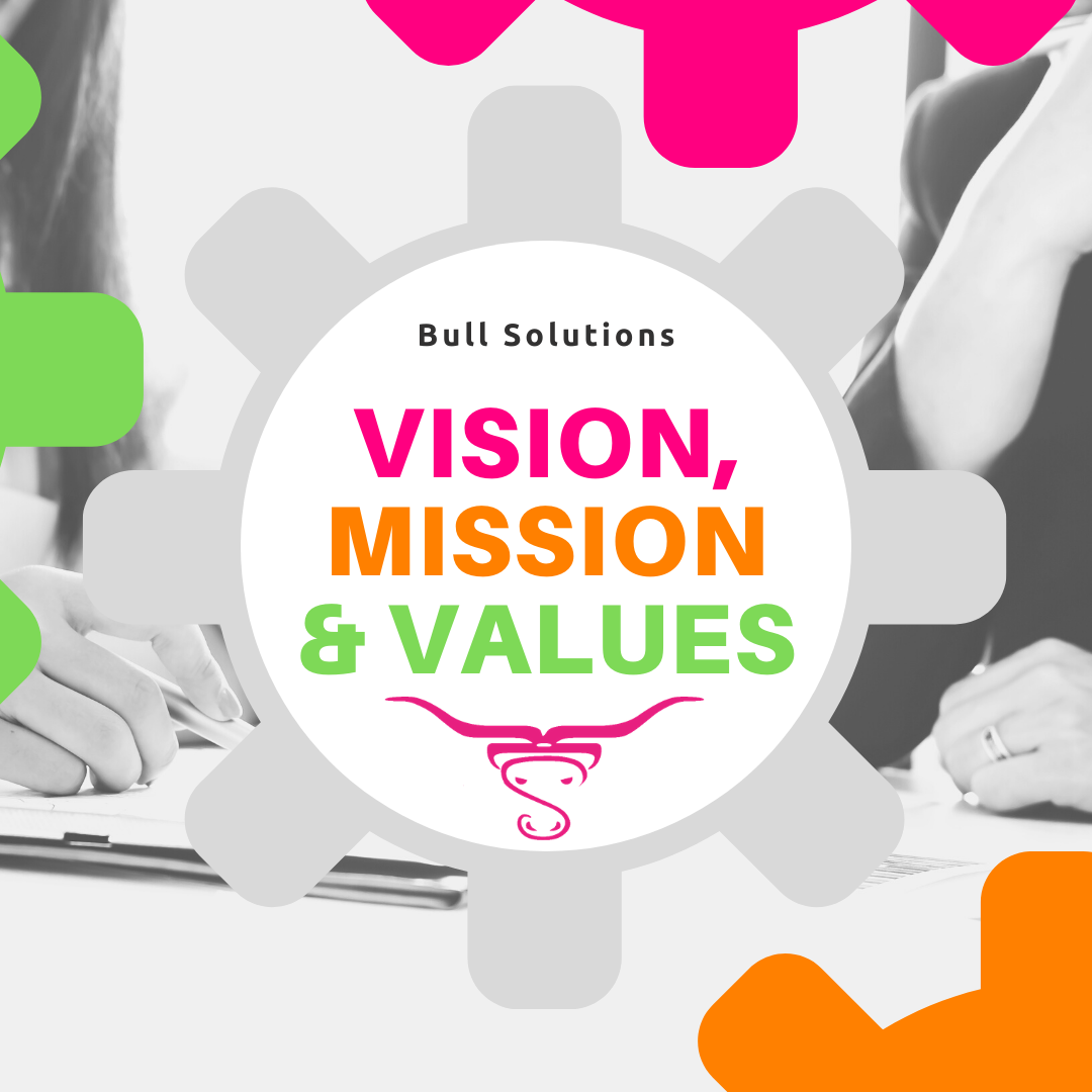 Vision, Mission, Values - Do not shoot in the dark and take a scatter-gun approach.